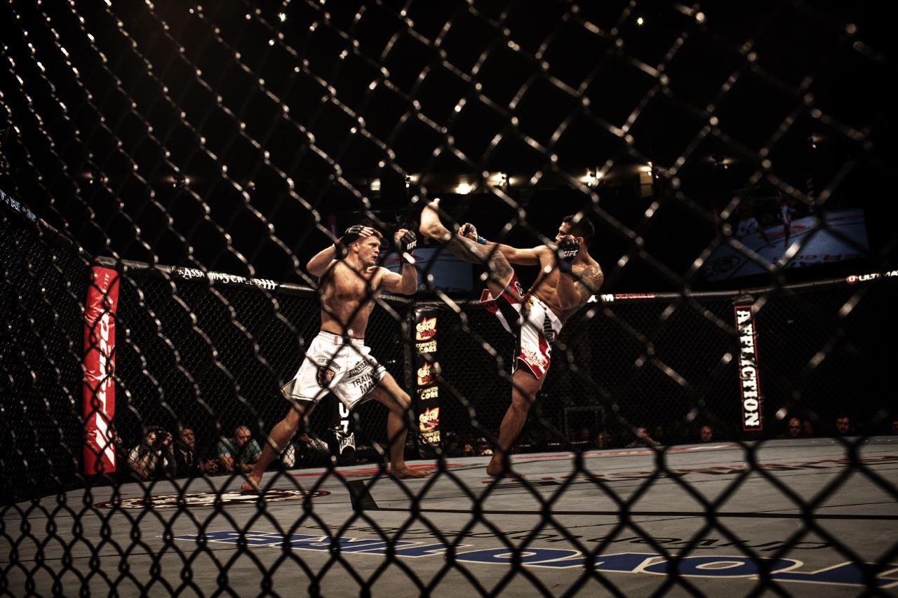 ULTIMATE_FIGHTERS_001.JPG