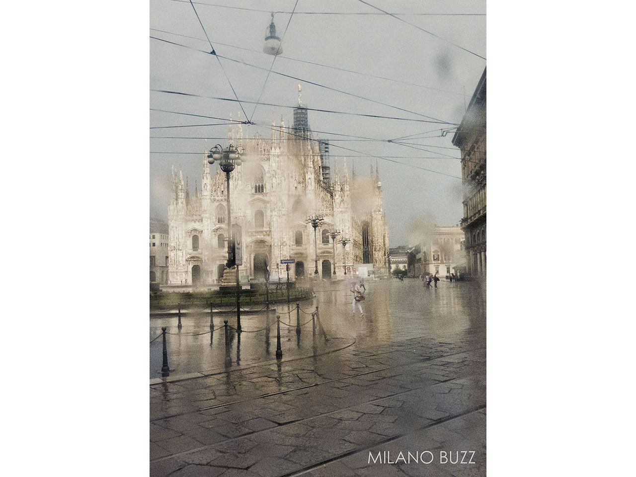 MILANO_BUZZ_BOOK_COVER_WEB.jpg