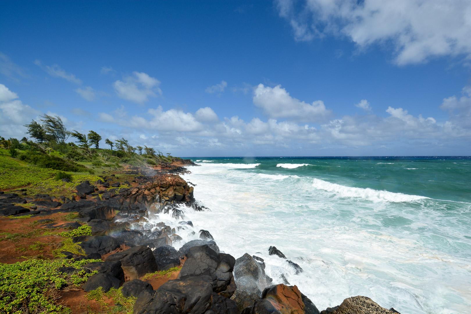 Along the Coconut Coast