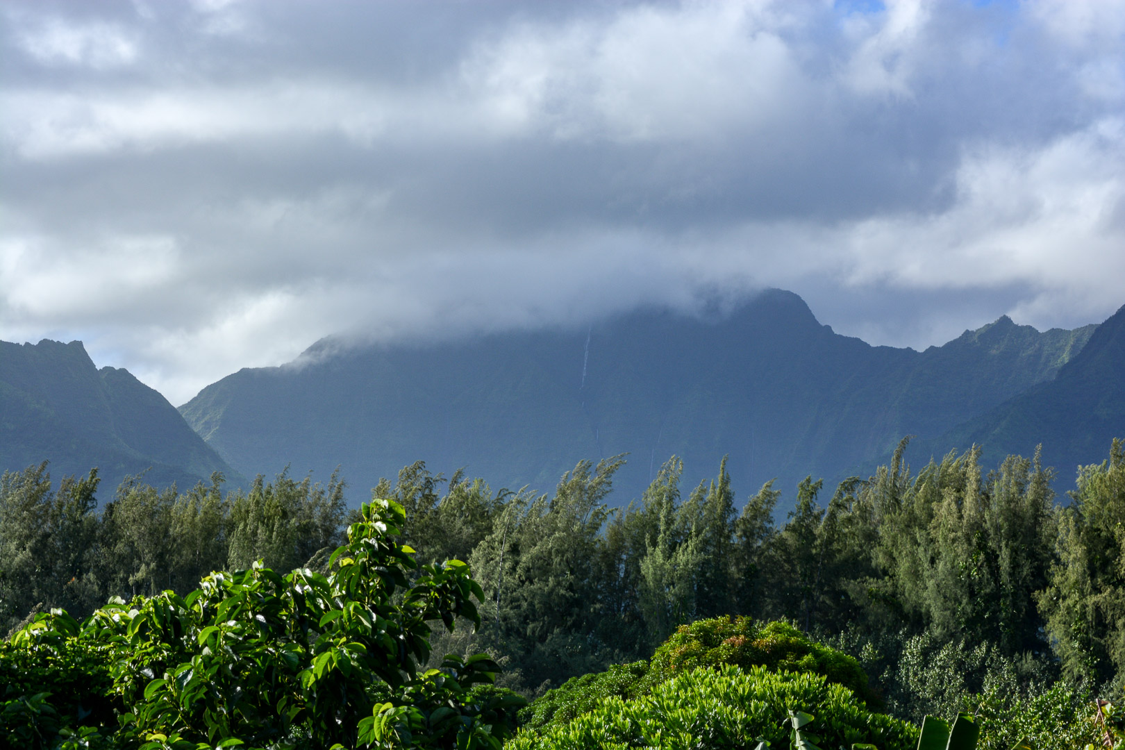Kawaikini Peak is Kauai's highest point at 5,148 feet and has been known as the wettest spot on Earth, with over 400 inches of rain per year! We only caught a brief 5 minute glimpse of the peak…it was covered with clouds and rainfall the entire rest of our time on the island