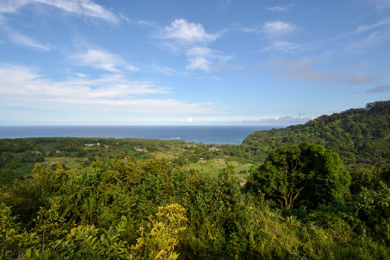 A lookout point along the road to Hana