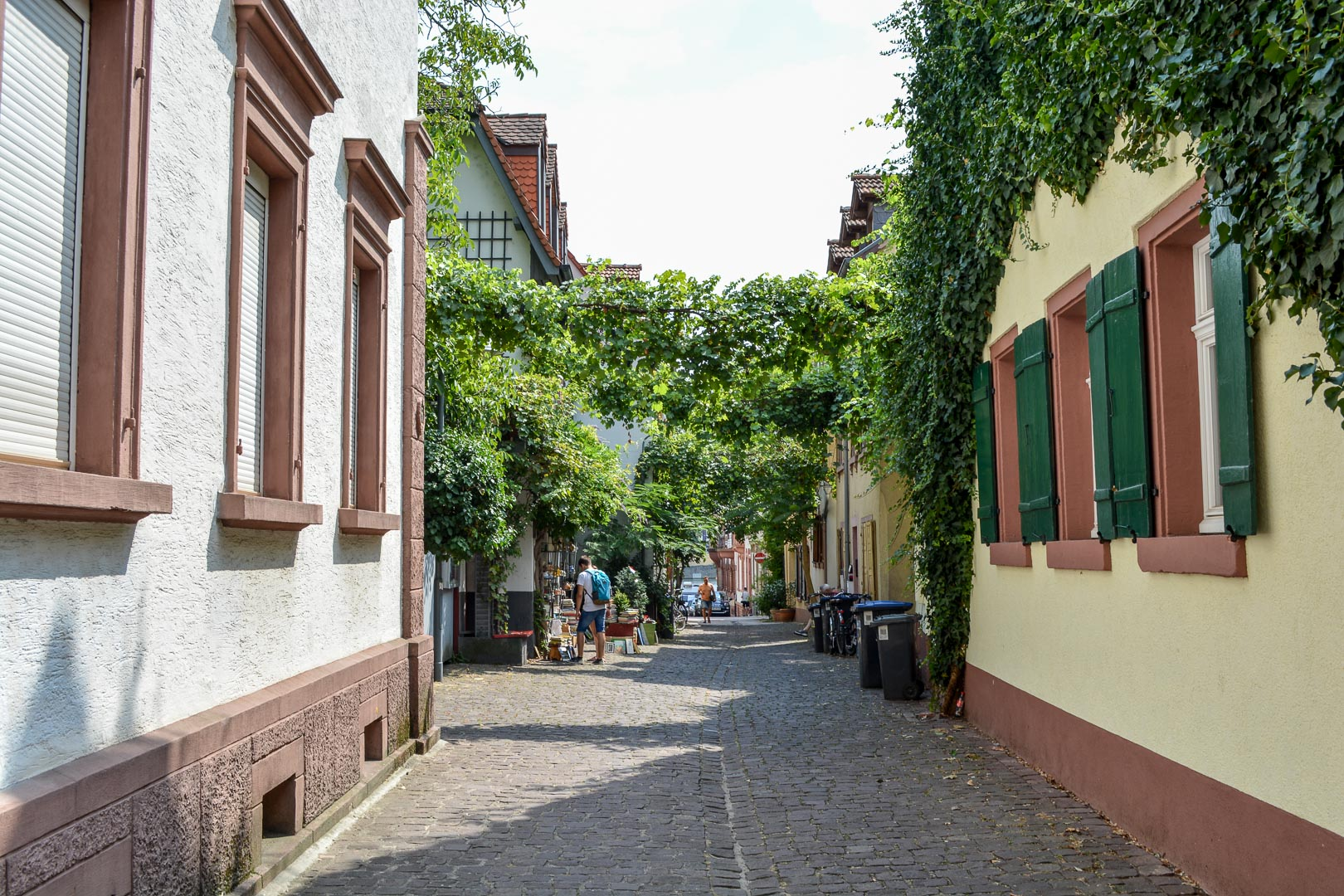 Charming Heidelberg Old Town
