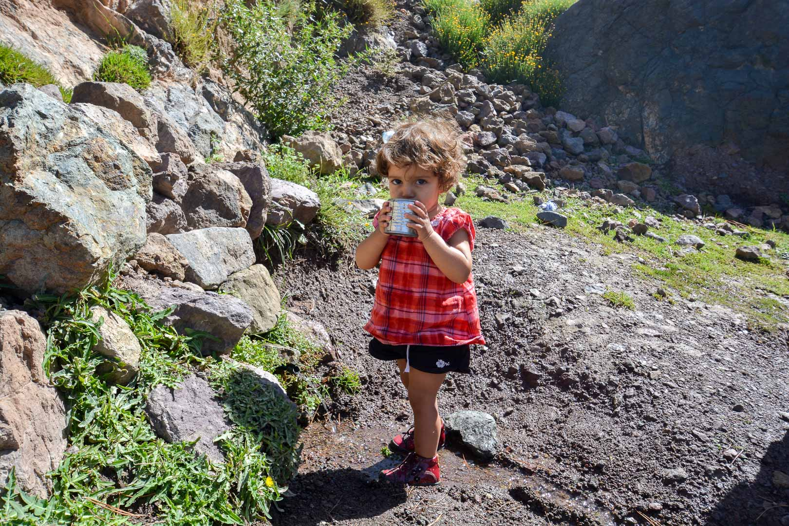 This little one was getting a drink from the mountain spring