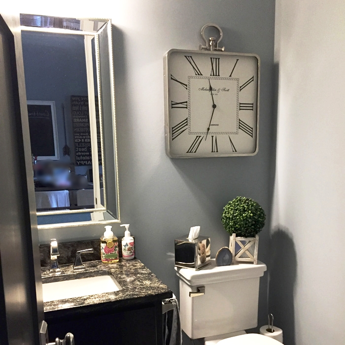 Mirror, clock, faux boxwood and rock (next to boxwood) from HomeGoods