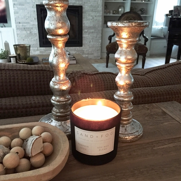 Candle sticks, candle and birch pieces (in bowl) from HomeGoods