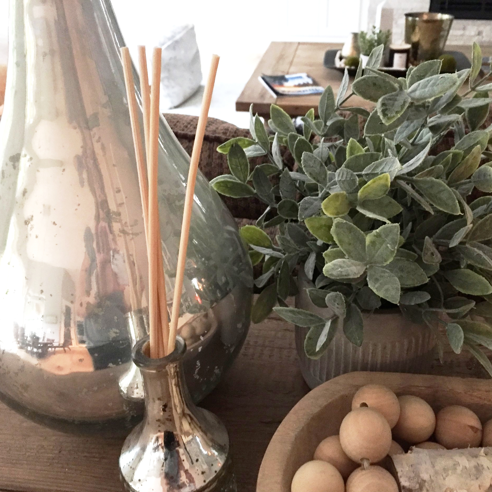 Vase, plant and birch pieces (in bowl) from HomeGoods