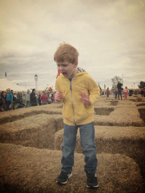 A small hay bale maze for kids at Sever's