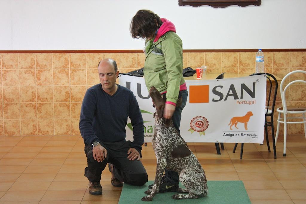 Curso - Treino Canino