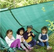 forestschool.jpg