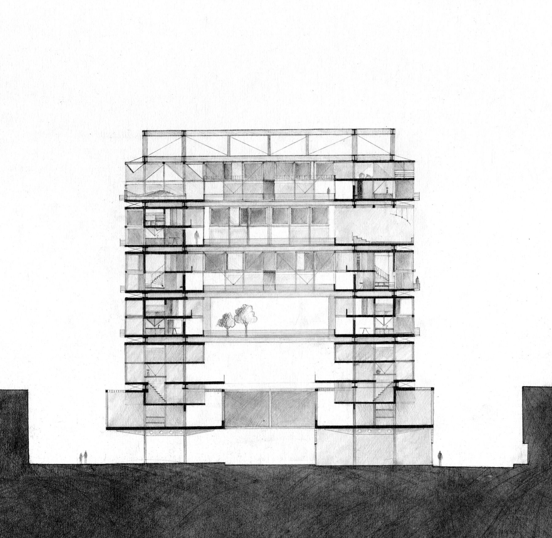 BUILDING SECTION / Graphite Rendering
