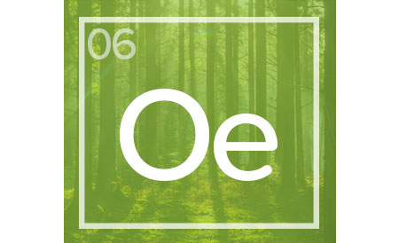 06-CCA-Operational-Effeciency-icon.jpg