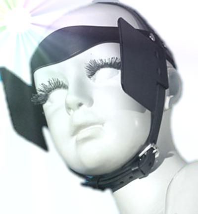 blinders.jpg