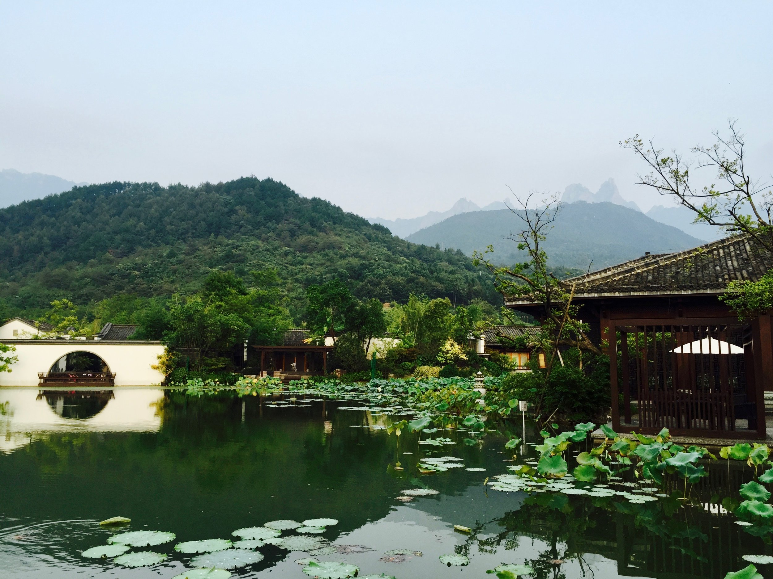 Tranquil traditional garden framed by Jiuhua Shan, one of the four sacred peaks of Chinese Buddhism dedicated to Ksitigarbha (Chinese: Dìzàng 地藏, Japanese: Jizō), bodhisattva who has vowed to liberate all beings from the hell realms (Anhui, China)