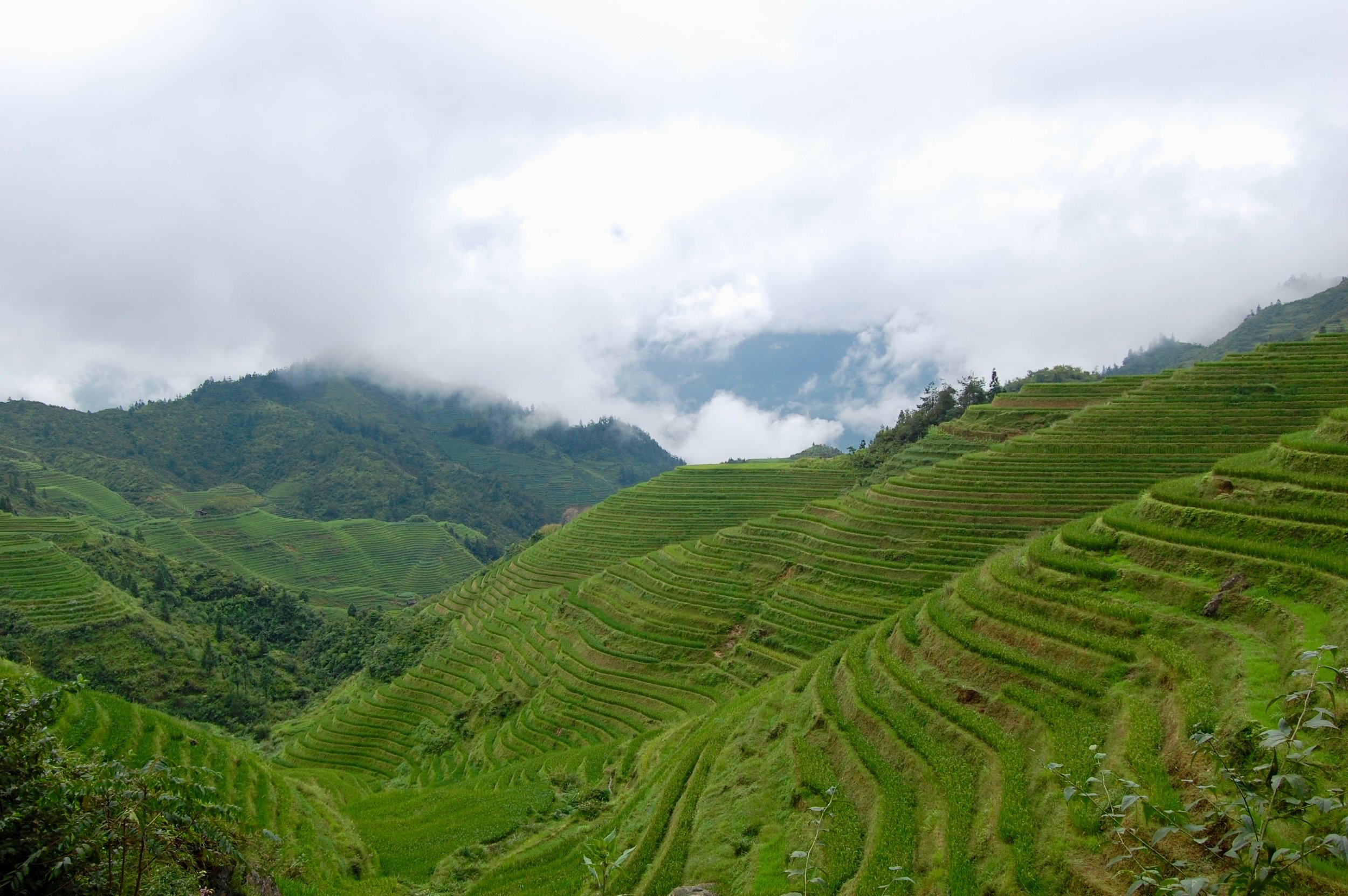 The Longsheng Rice Terraces (Guangxi, China)