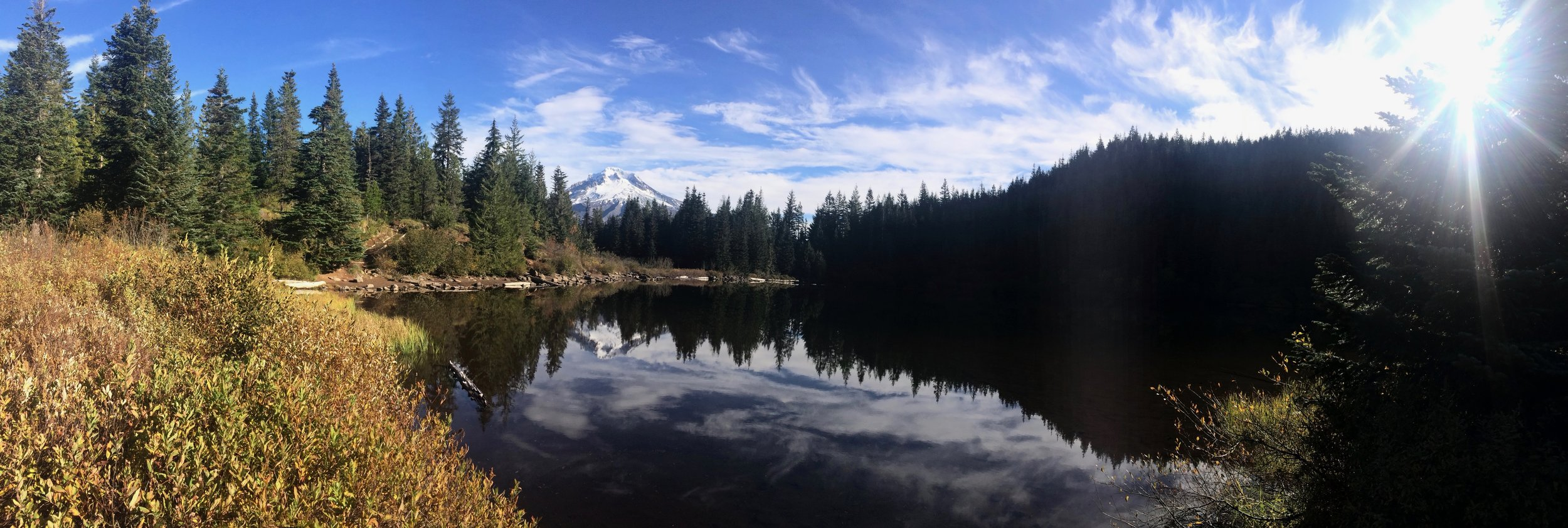 The majesty of the Pacific Northwest (Mount Hood National Forest, OR)