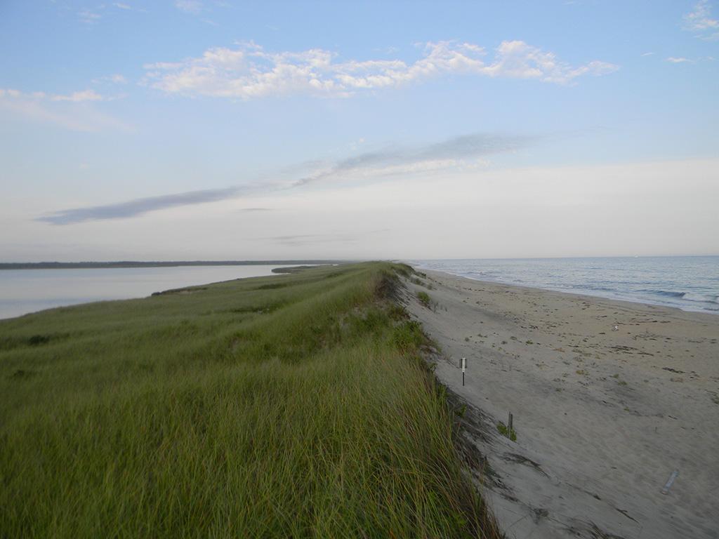 12.south-beach.jpg