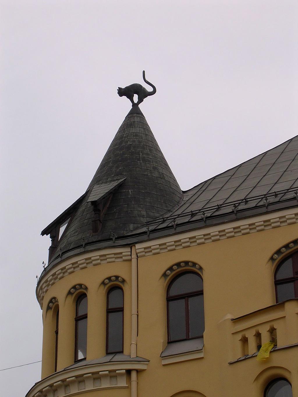 2.cat-on-roof-riga-2008.jpg