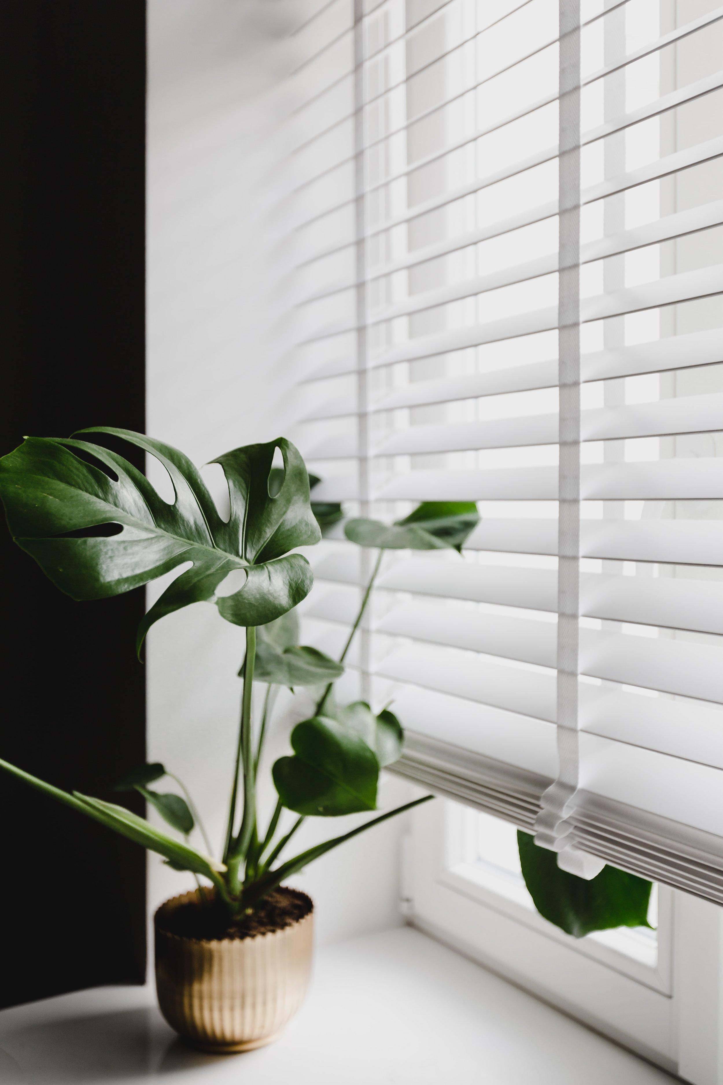 window treatments_18.jpg