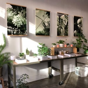 BIZ LOCATION art panel photography soothing collection.jpg
