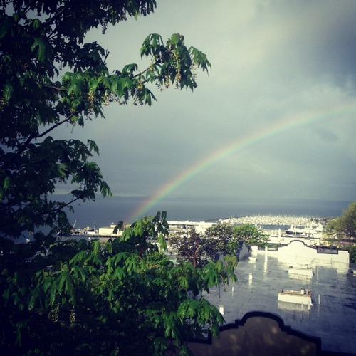 Photo:Rainbow seen from my bedroom window