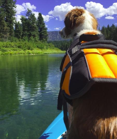 Photo: Me on my kayak trip on the Wenatchee River