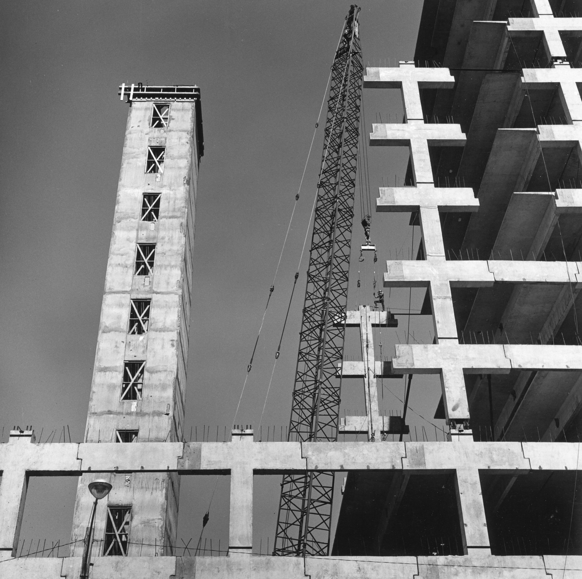 Robert Construction BW008.jpg