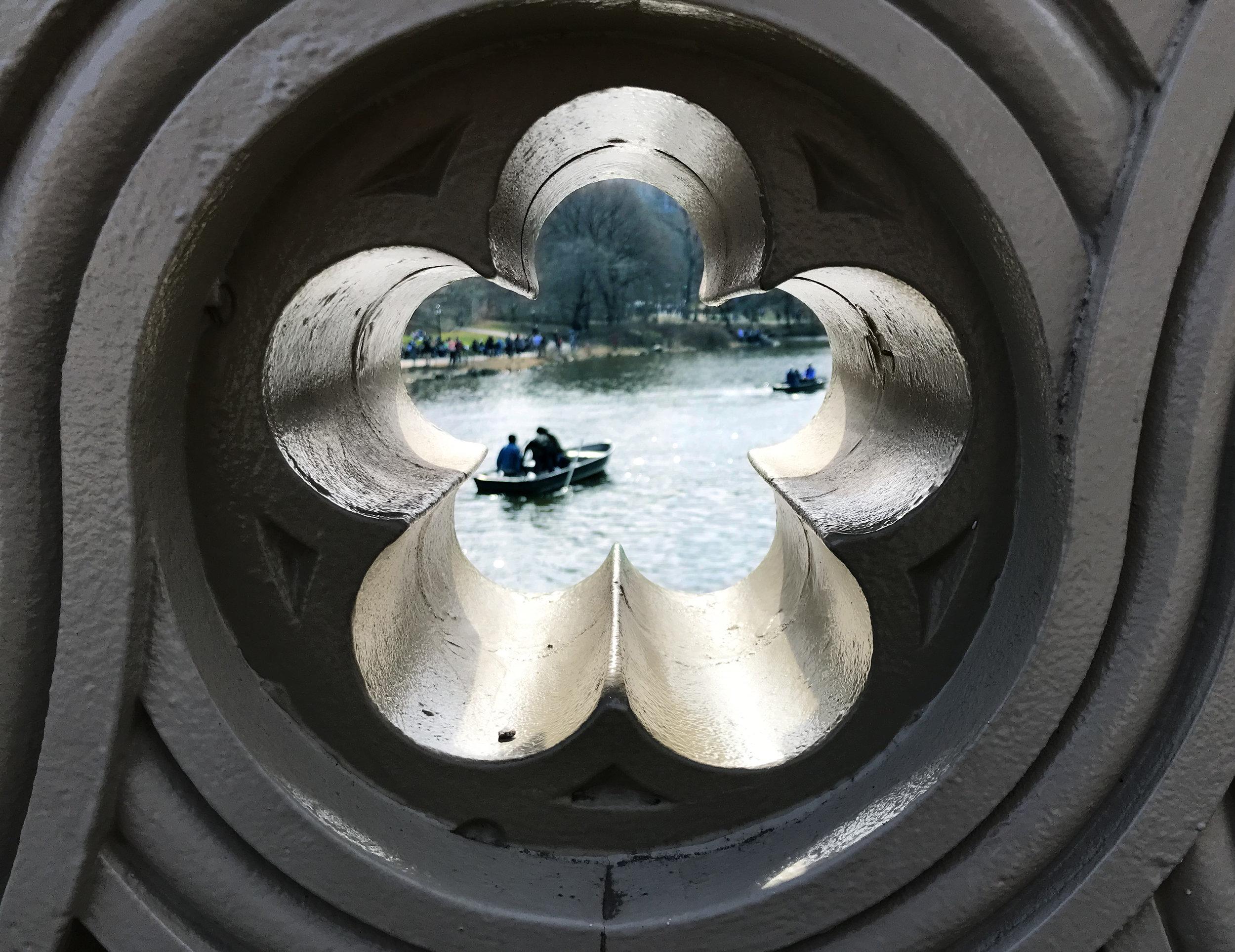 סנטרל פארק בראי הצילום