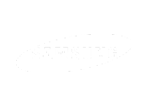SamsungJacinta Corporate Logos.png