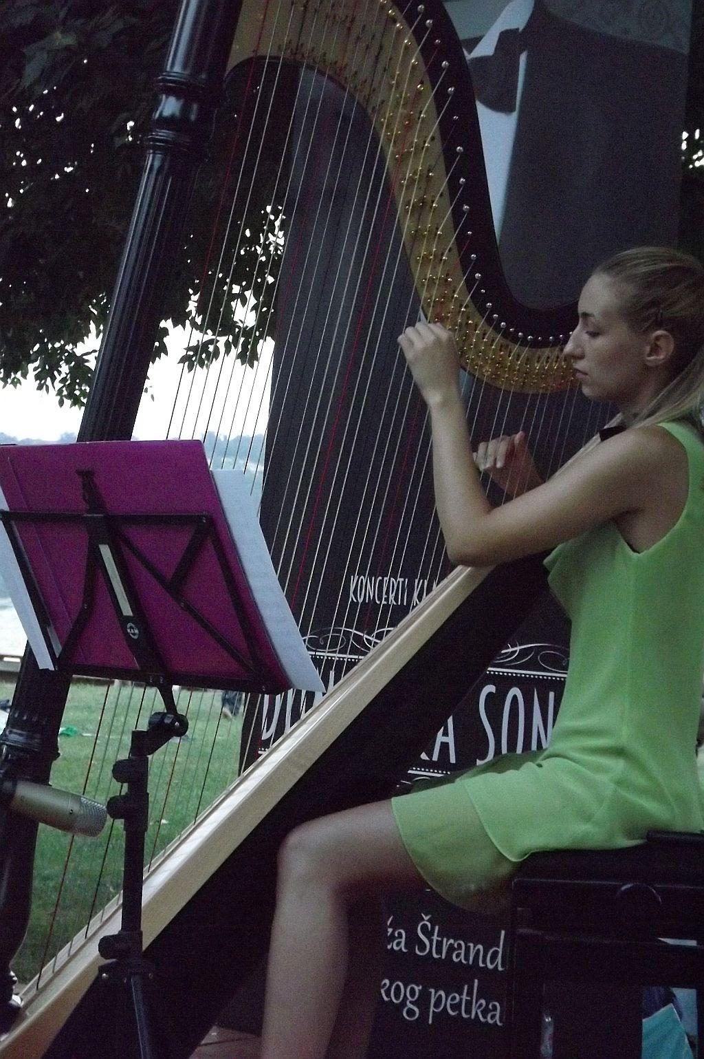 Danube Sonata Festival, 2015