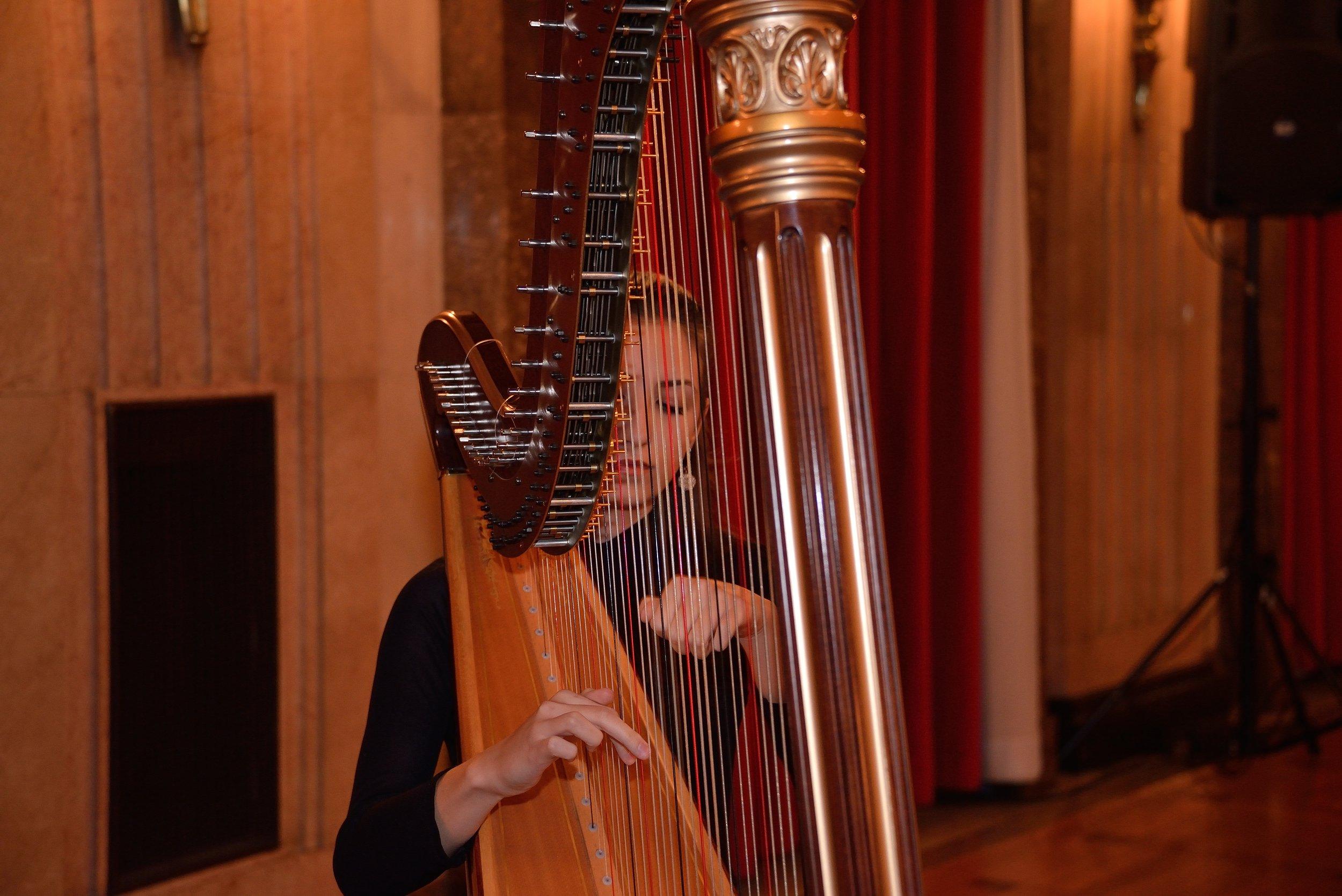 Recital at Belgrade City Hall, 2013