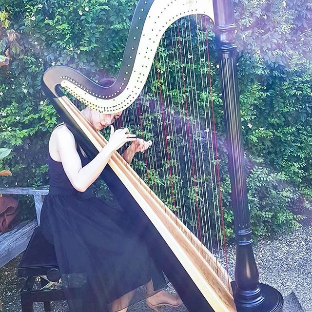 First time I played a Disney song for the walking down the aisle, at the gorgeous @hillstonestlucia  Congrats Jaimi-Lee and Todd!  #harpist #lyonandhealyharps #brisbaneharpist #brisbanemusic #weddingharpist #JaimiLee&Todd #hillstonestlucia #hillstonestluciawedding #practicalharpist #onceuponadream