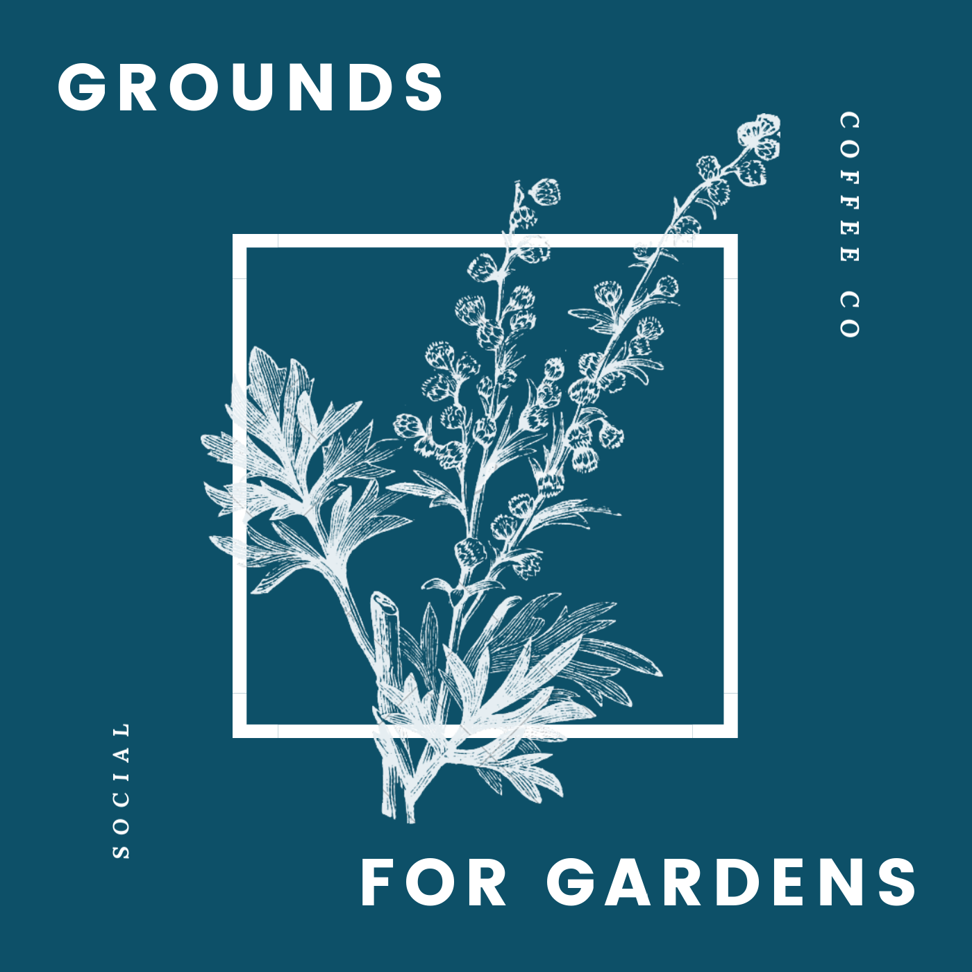Come by the shop for free coffee grounds. You can always add coffee grounds to compost, but mixing it directly into the soil can help balance alkaline soil or give a boost of acidity for plants that prefer a lower pH, like hydrangeas or rhododendrons