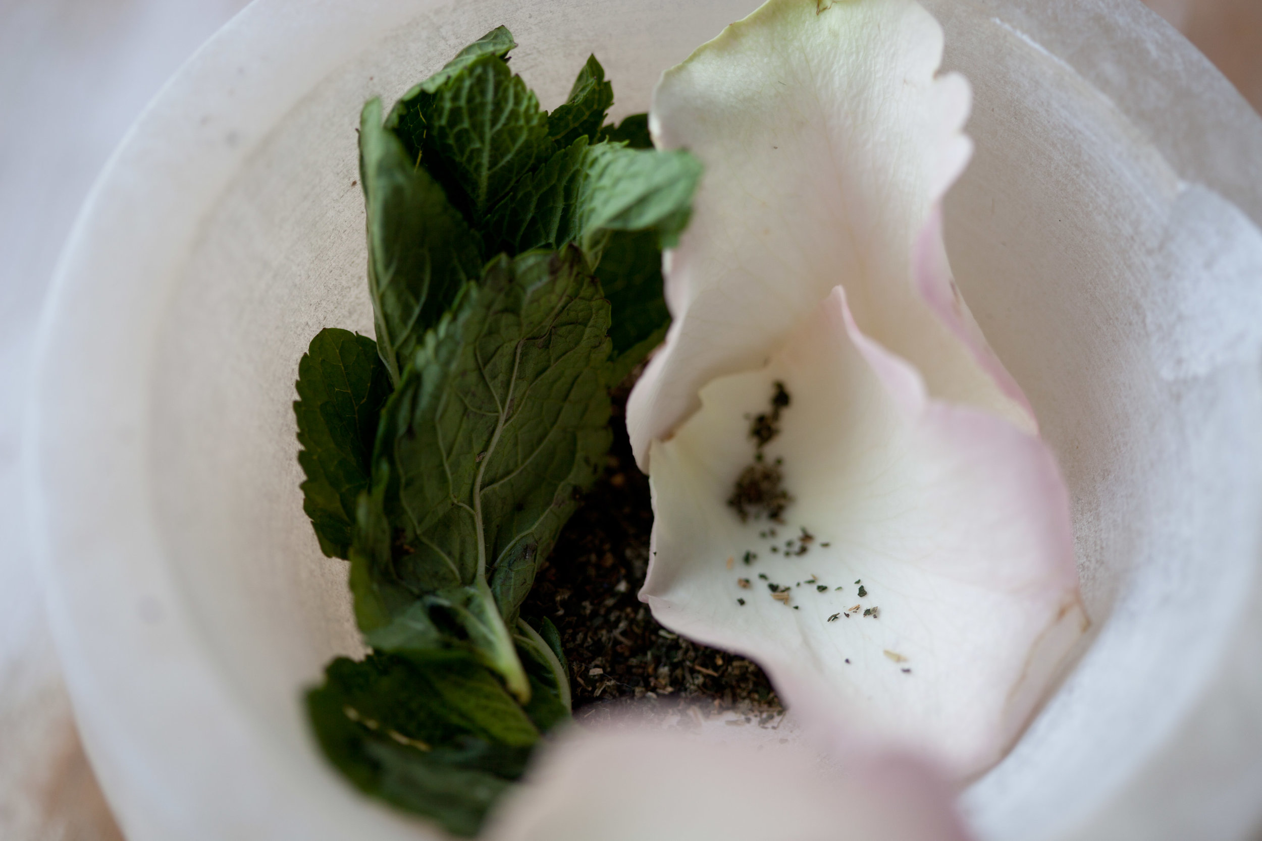TEA-MINT-ROSE-003.jpg
