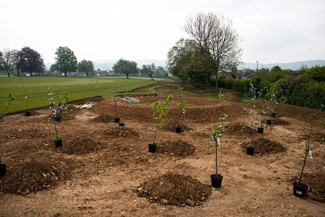 Wildflower meadow with the completed phase 1 ground work and the orchard trees waiting to be planted at @sherbornegirls.  In the uk we have seen a 75% decline in insect populations, a 97% loss of wildflower meadow habitat and now have 40 million fewer birds than we did 40 years ago. Informing young people about ecological decline is essential if we are to fully prepare them for the future and through rewilding we can give young people hope and an opportunity to turn this story around, to help save our endangered species and reverse decline.  @operationfuture Conservation School Award @sherbornegirls  #rewilding #wildflowers #regeneration #lovenature