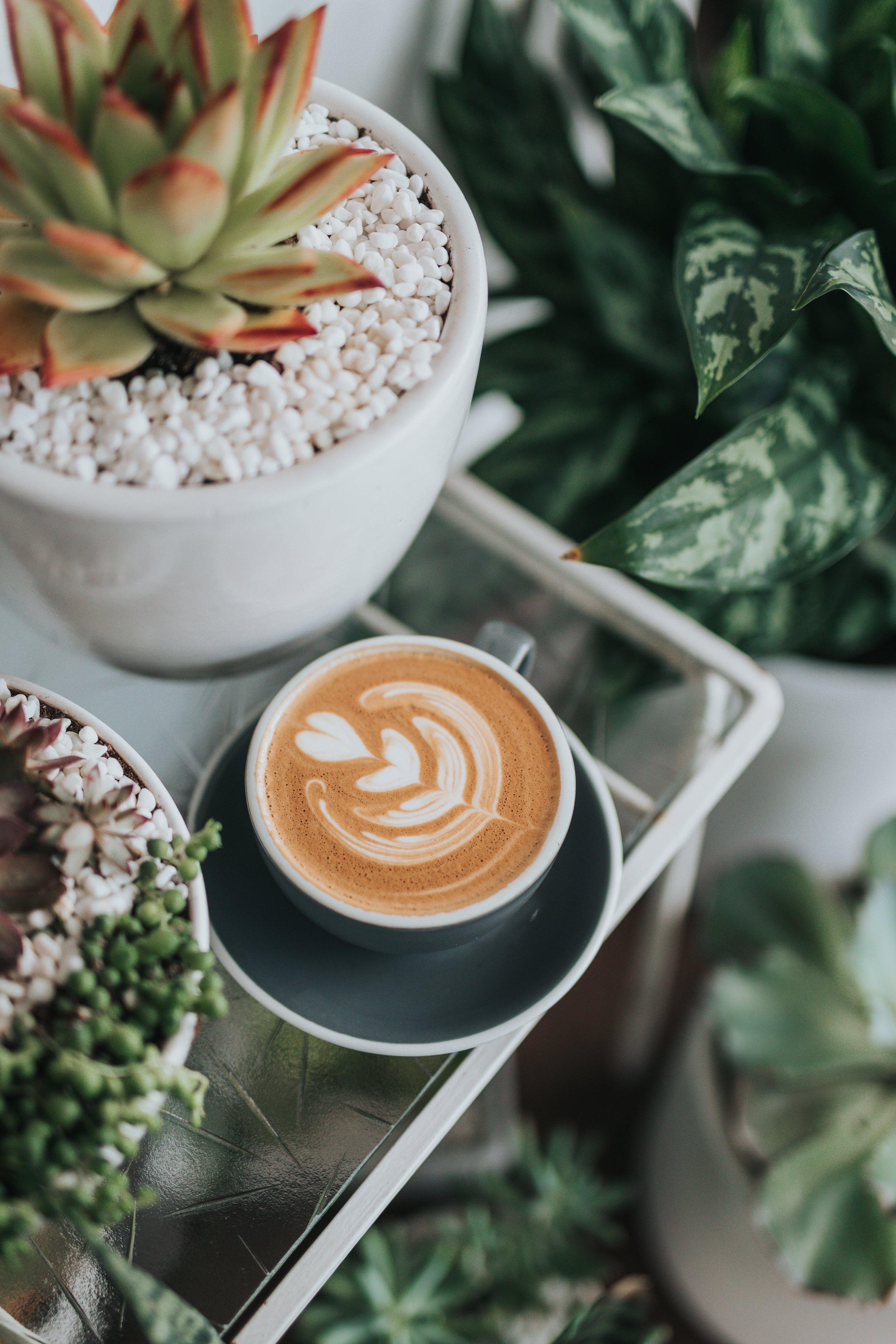 Pumpkin Spice Latte - Serves 1