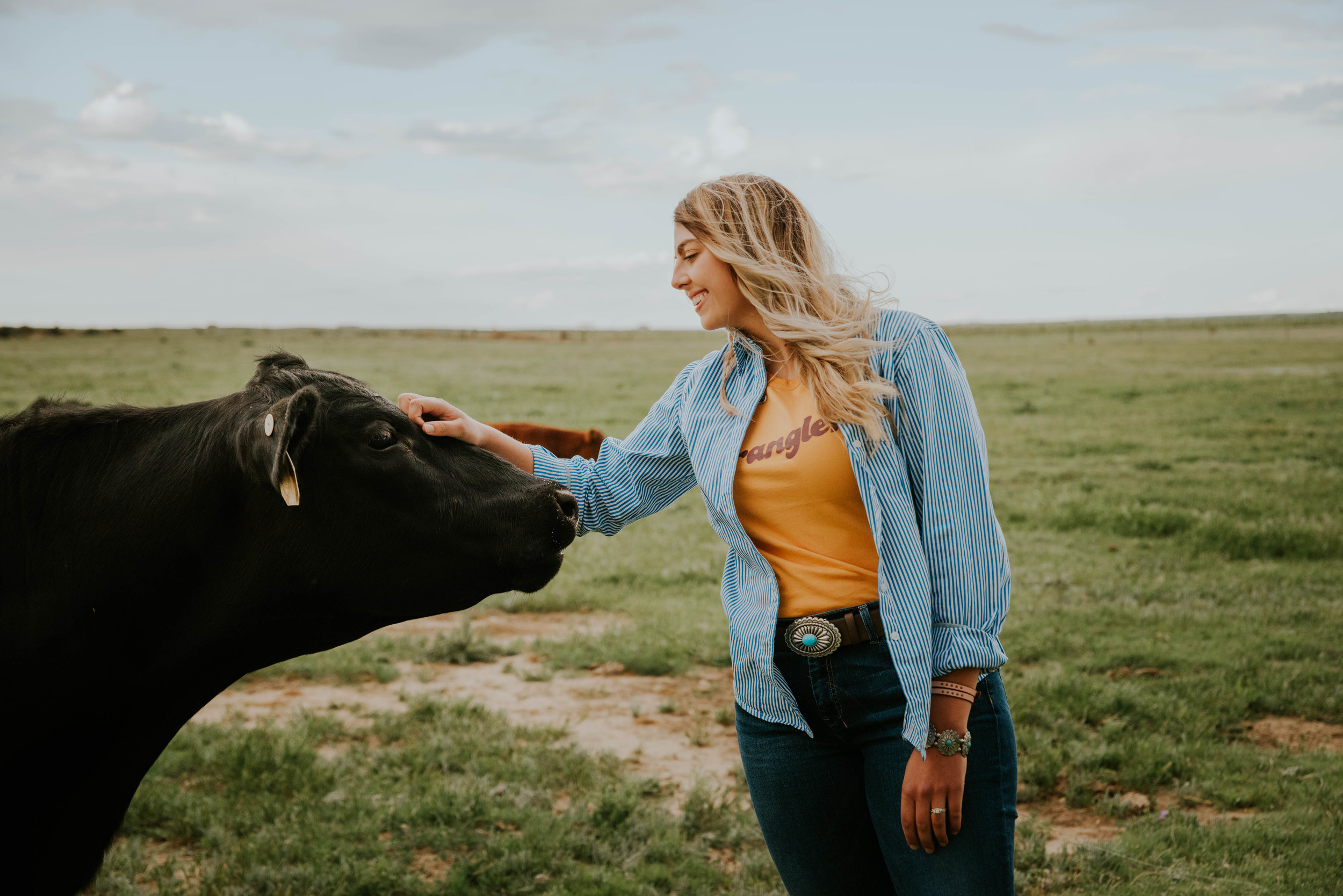 Found me from my crazy obsession with cattle and farm life? - Now you want to know MORE?!