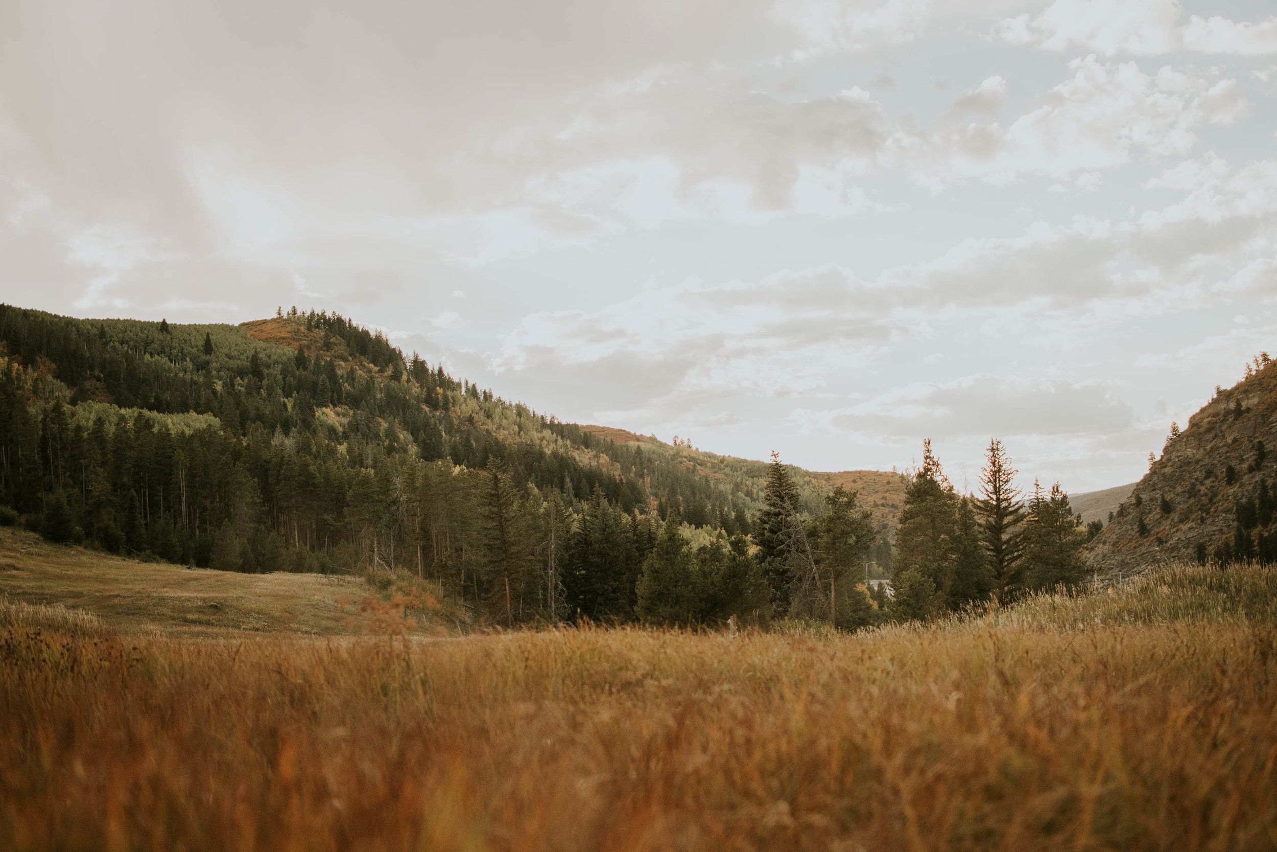 Miss. Miller's Photography | Colorado Wedding Photographer | Vail Colorado | Vail Wedding | Vail Resort