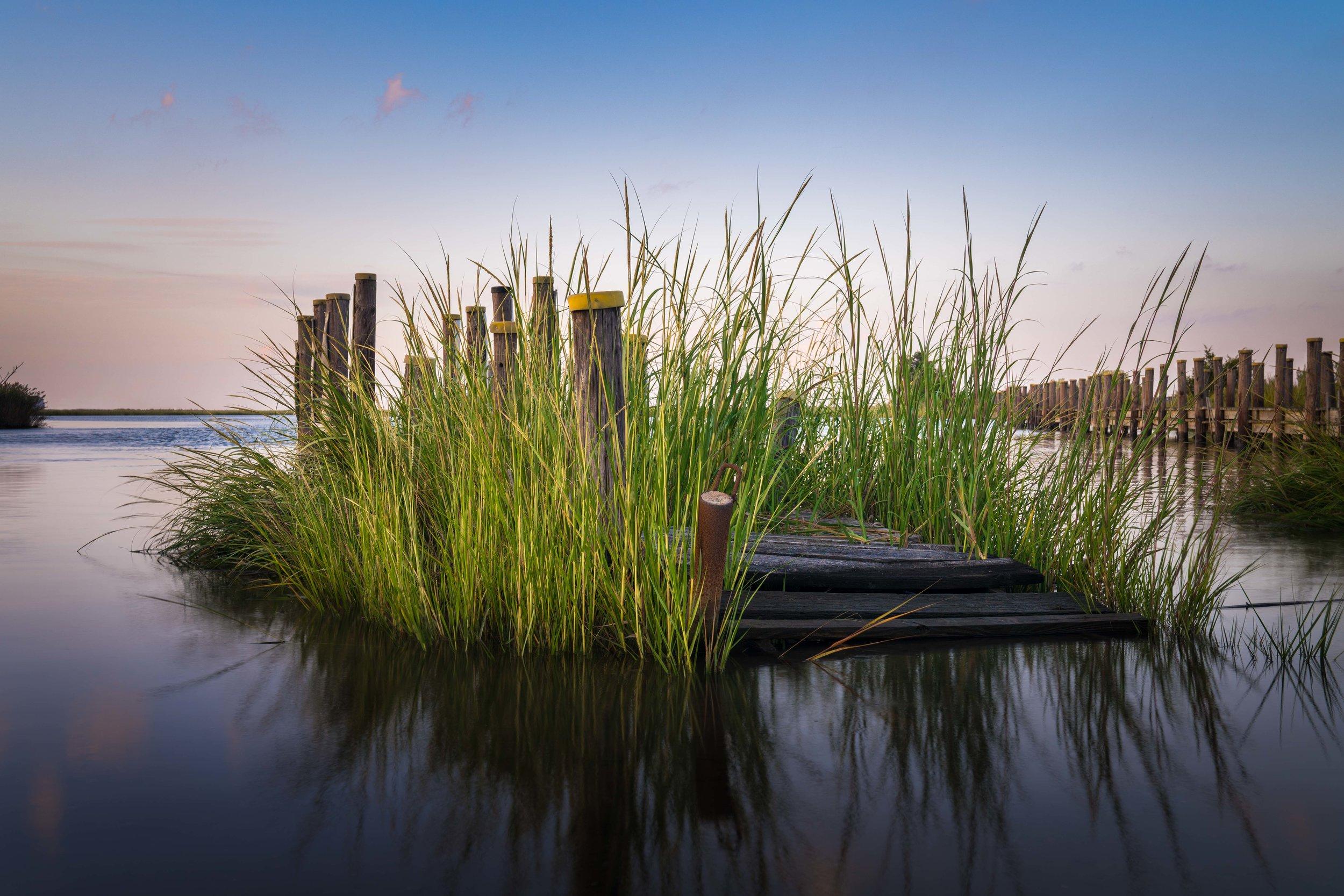 Reclaimed  Murderkill River, Delaware Bay