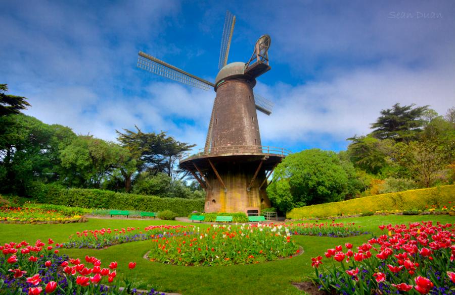 windmills.png