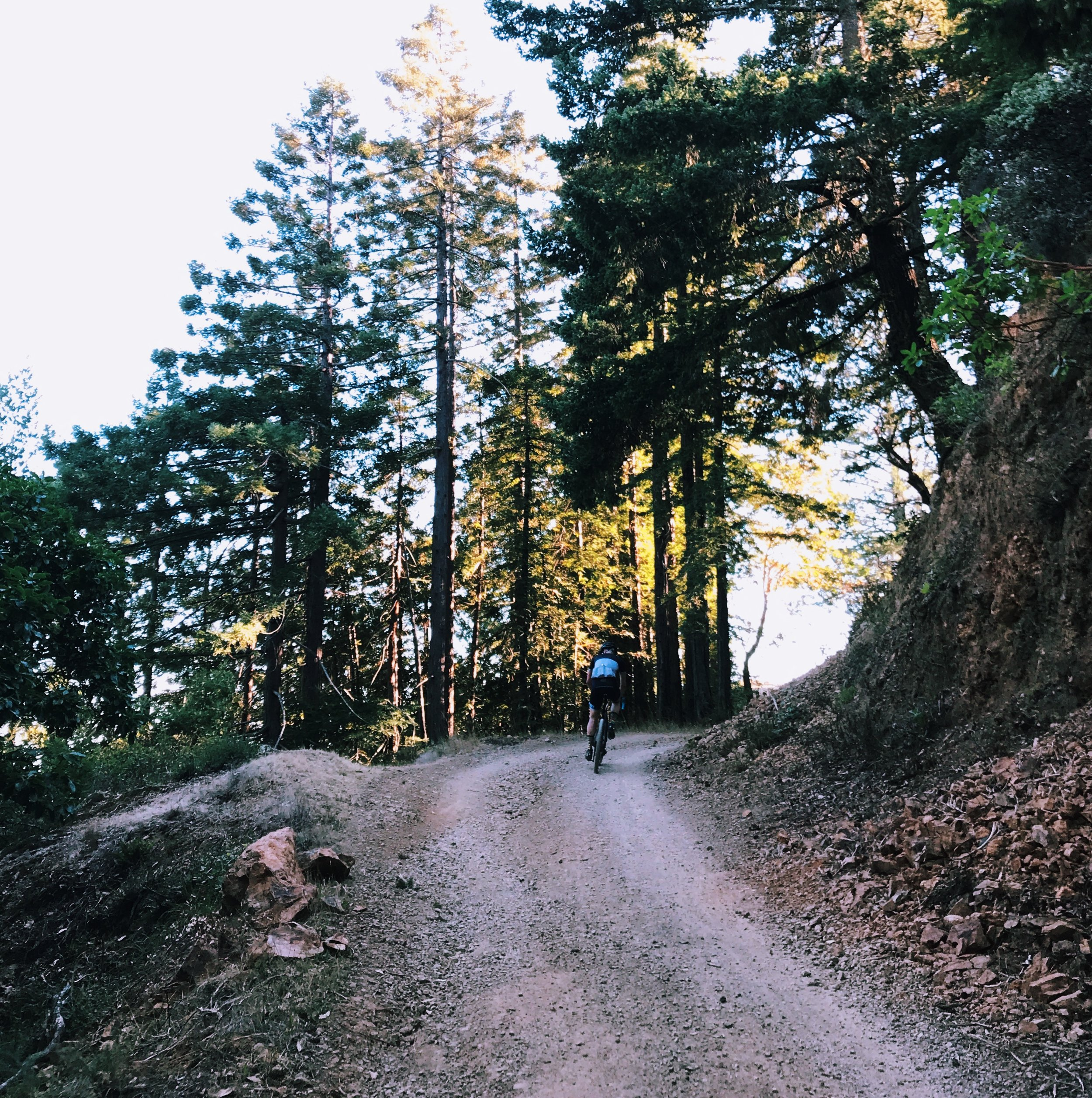 Old Railroad Grade Gravel Route