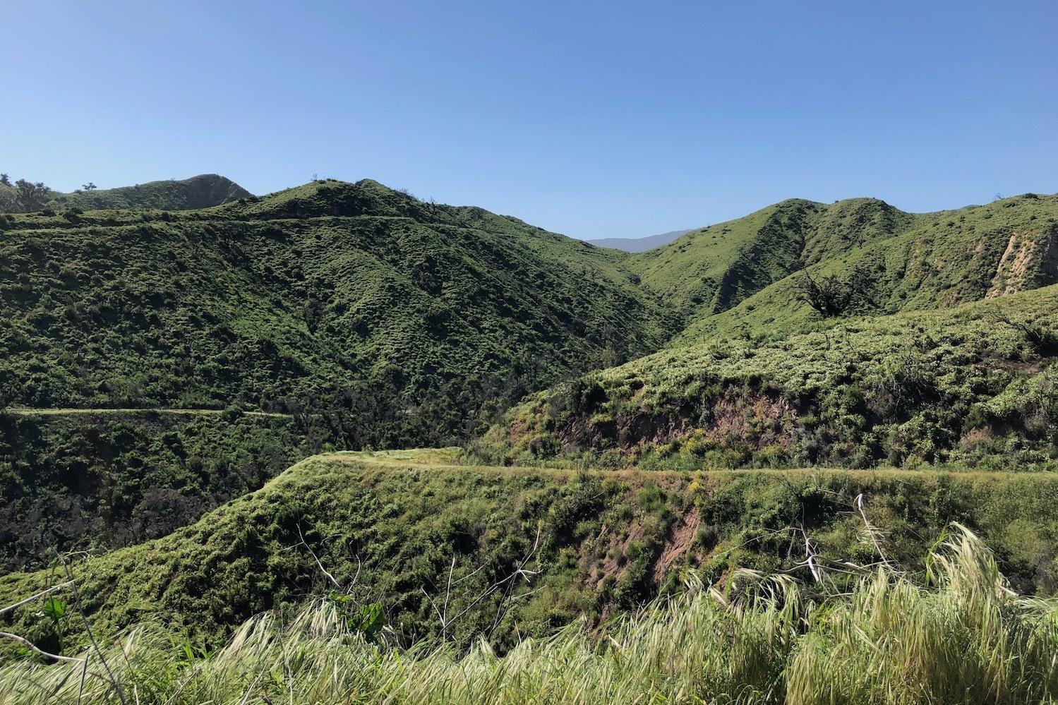 gravelstoke_elcap+hillside.jpg