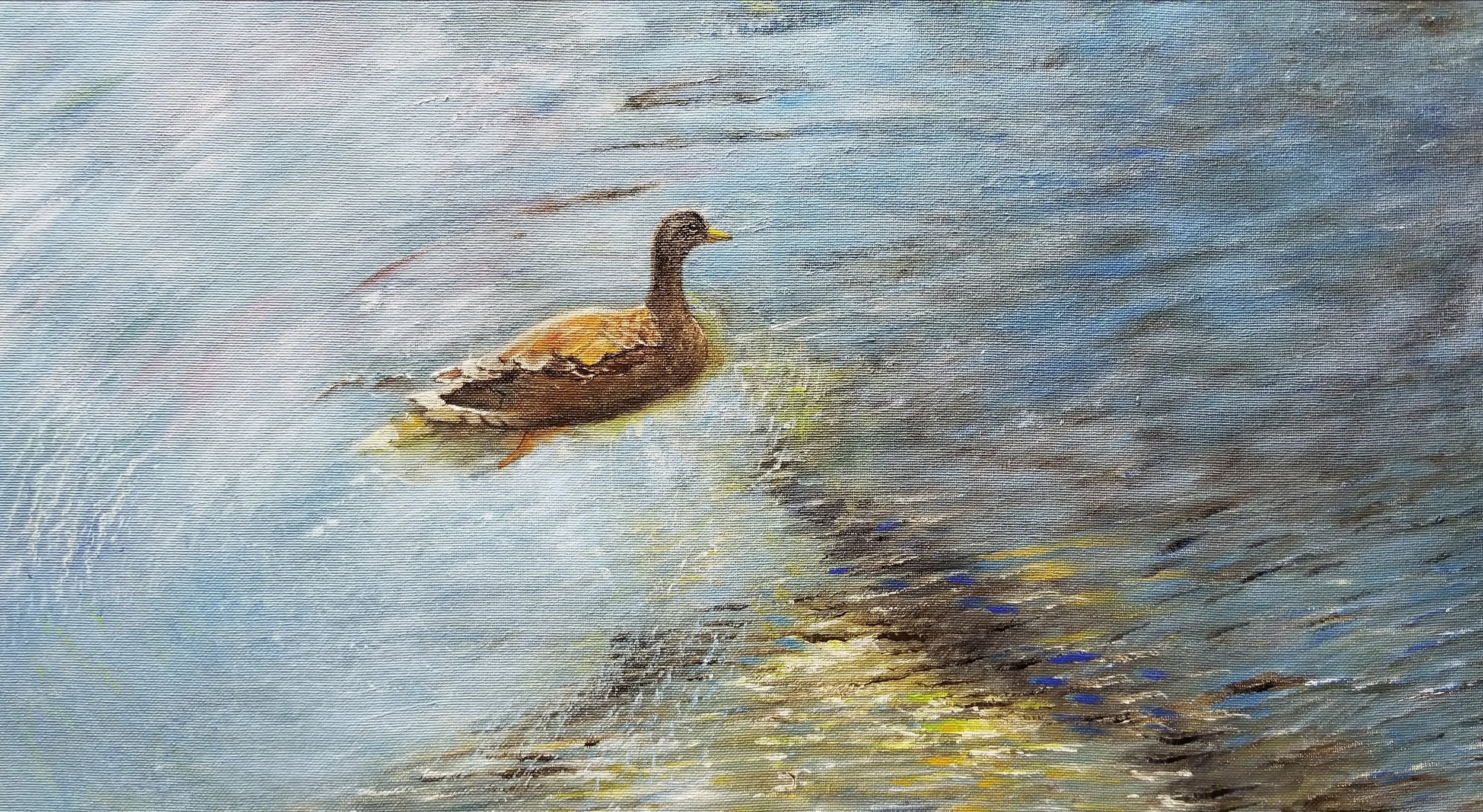 Lackey_Duck+on+a+Pond_Acrylic+18+X+24.jpg