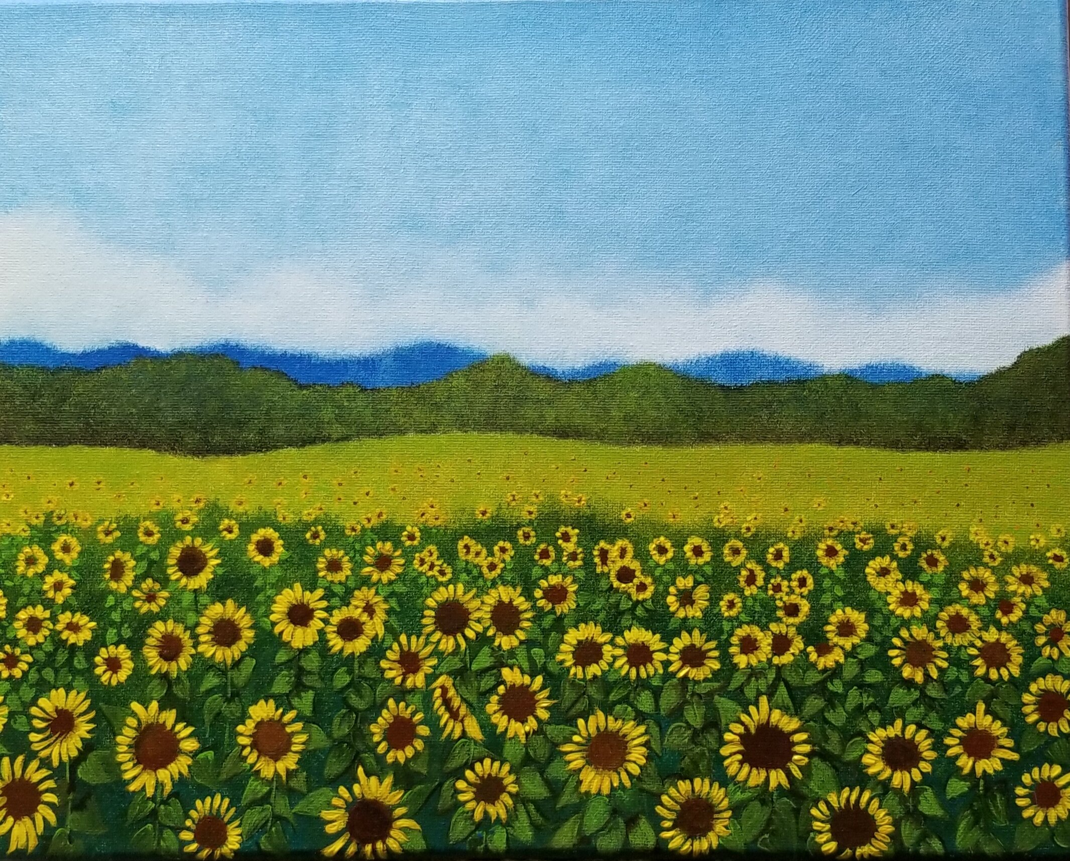 Lackey_Field of Sunflowers_Acrylic 11 X 14.jpg