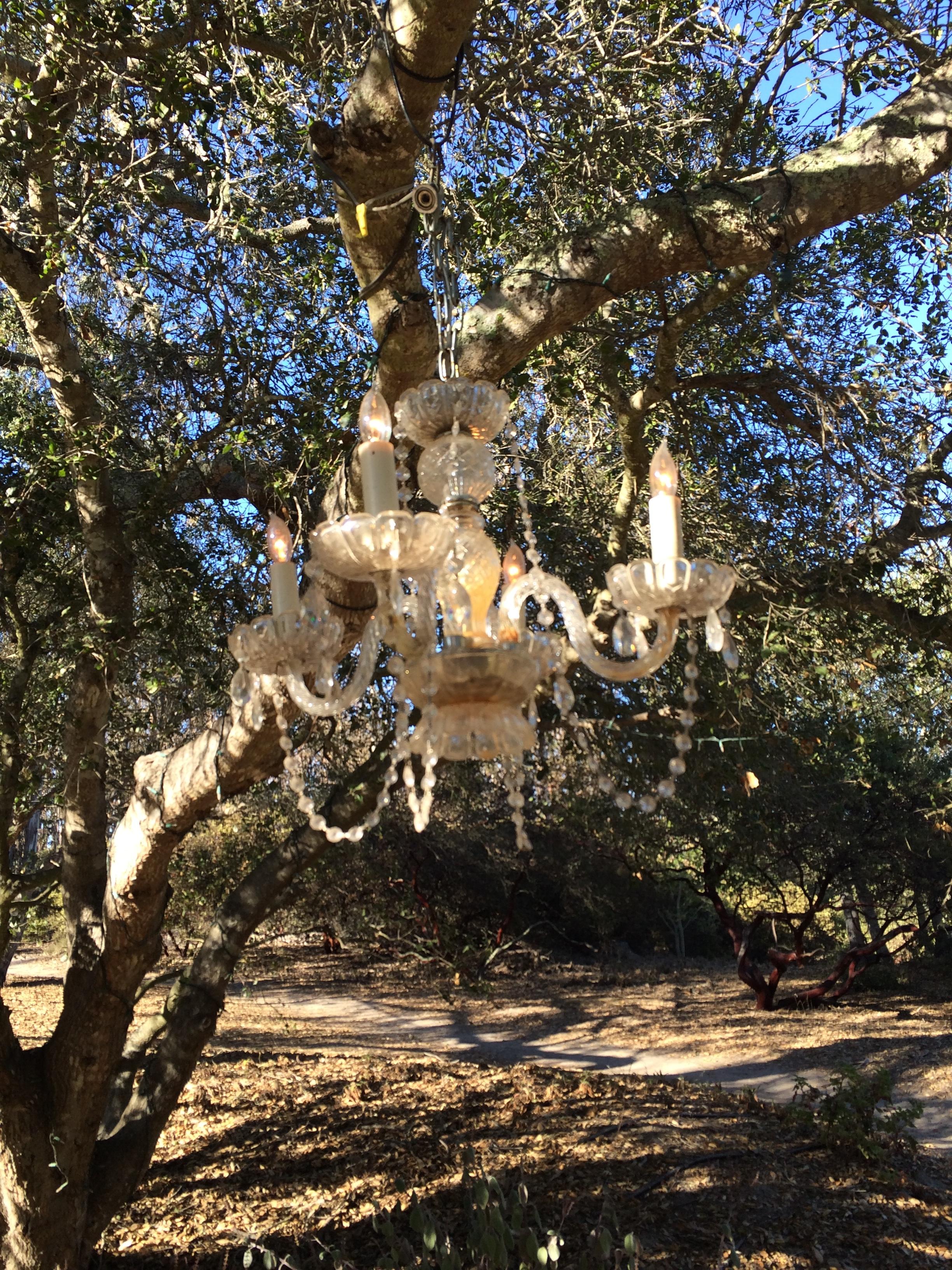 rustic chandelier.JPG