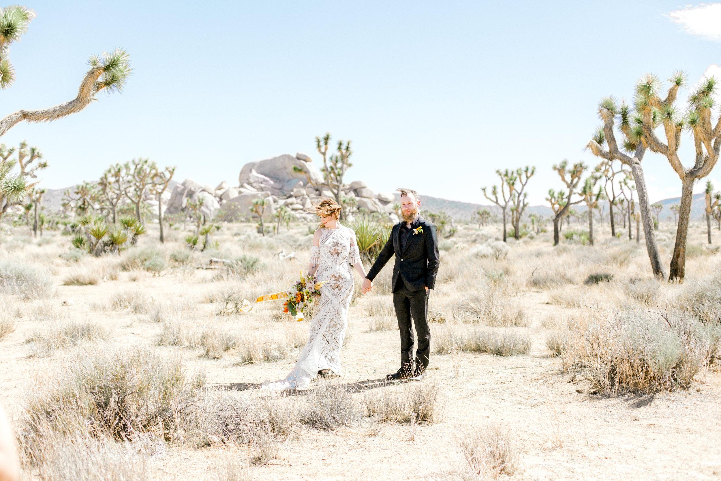jessica sgubin photography atlanta portrait photographer engagement family couple wedding joshua tree wedding elopement-1-2.jpg