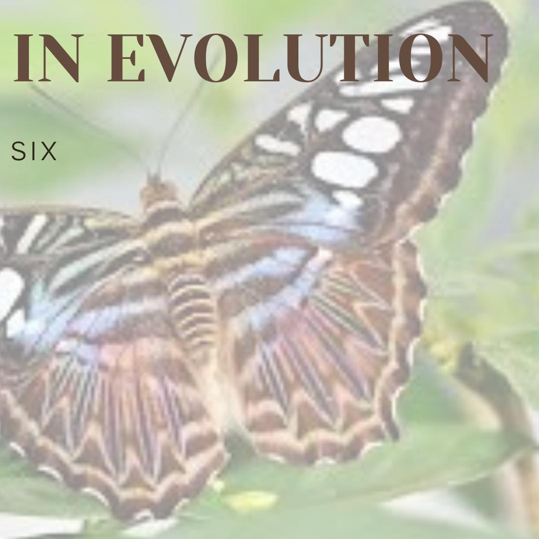 In Evolution
