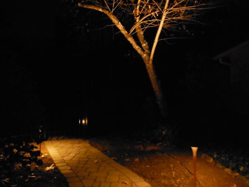 Low-Voltage Lighting 2014 (5).jpg