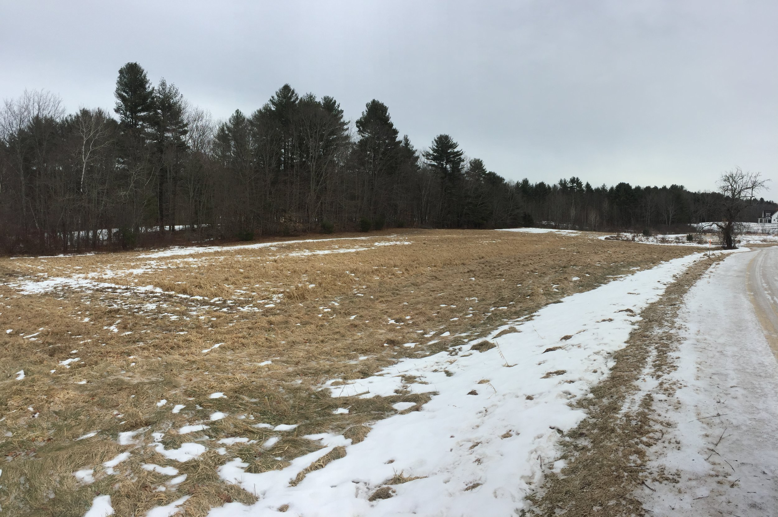 How it all began… The 1 acre plot in February 2018.