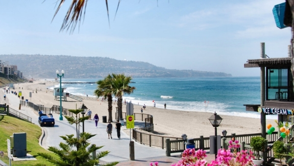 OUR HOME - The Media Palm is based in the beautiful South Bay of Los Angeles. If you're in Southern California, we'd love to meet in person. Otherwise, FaceTime and Skype work just fine (unless you've got some Frequent Flyer miles to share).