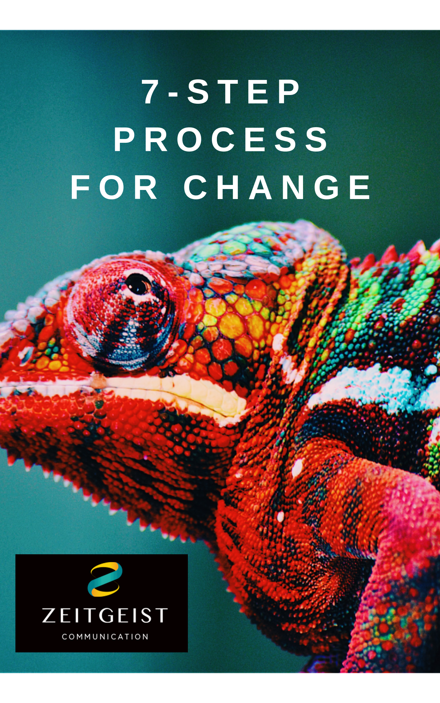 Download your free copy of the 7-Step Process for Change below! -